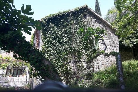 Kotor'da 4500m² Deniz Manzaralı Eski Taş Evler Bulunan Satılık Arsa