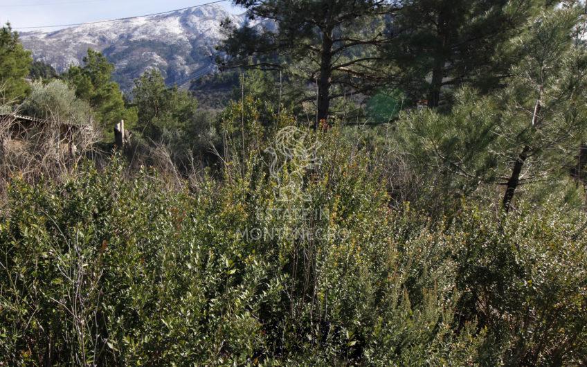 Kavač, Kotor'da 582m² Kentsel Arsa
